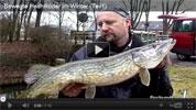 Winter Hecht Köderfisch