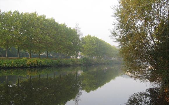 Die Saar im Herbst. Zander und Barsche satt.