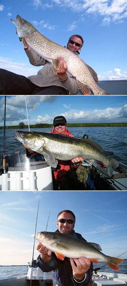 Siegerfische 2009